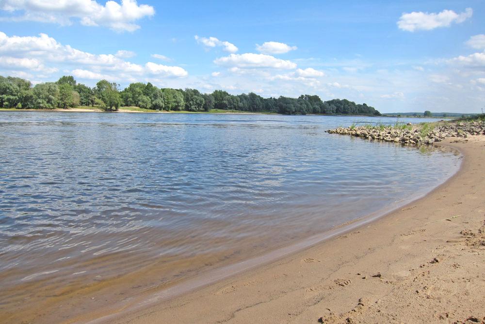 Die Elbe in Alt Garge bei Bleckede im Landkreis Lüneburg